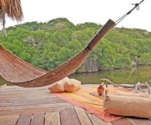 Country hammock!